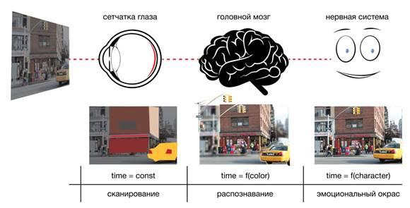 brain_2-01